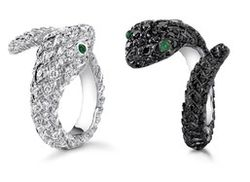 Rings designed by Brad Pitt and Angelina Jolie for Asprey