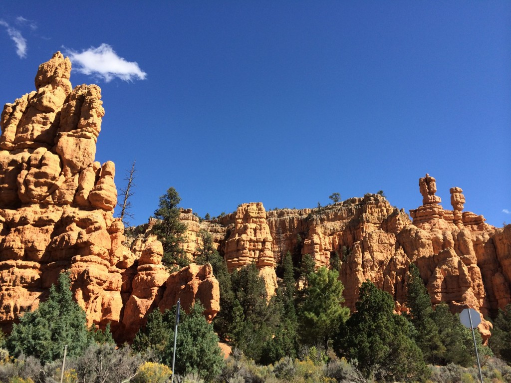Bryce Canyon, photo Cathleen McCarthy