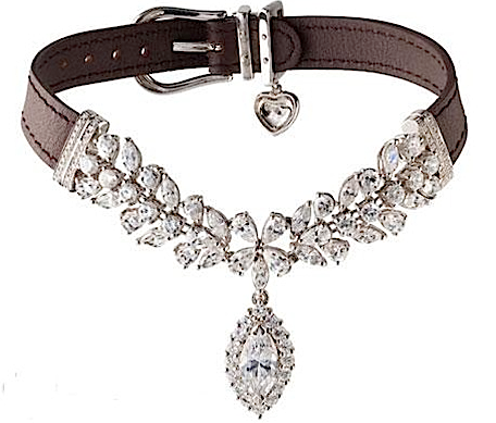 La Jeune Tuilipe diamond dog collar