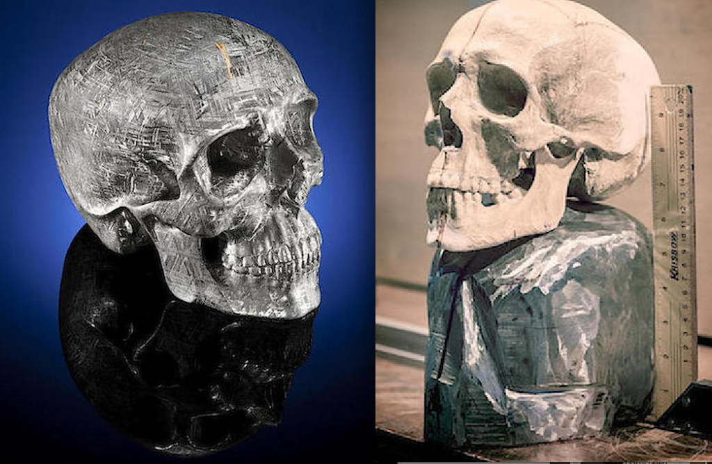 Lifesize Gibeon meteorite skull