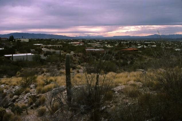 Tucson Sunset (Cathleen McCarthy/The Jewelry Loupe)